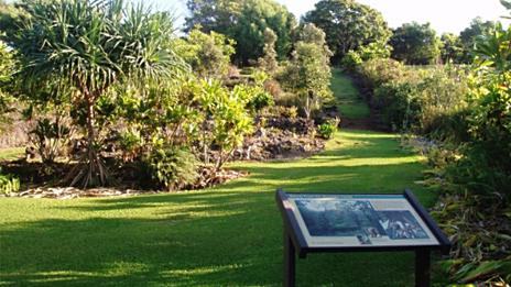 amy-greenwell-garden